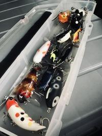 2020/11/03無情の雨のナイトゲーム - BG's Topwater Bass Fishing Blog