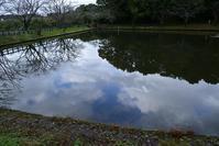 北総の里山とため池を散歩 - pottering