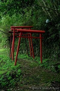 三閑(凩)稲荷神社 - Mark.M.Watanabeの熊本撮影紀行