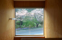 階段ホールのピクチャーウインドウ! - 島田博一建築設計室のWEEKLY  PHOTO / 栃木県 建築設計事務所