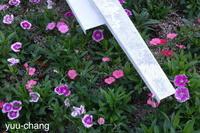 やや復活の花時計 - 下手糞でも楽しめりゃいいじゃんPHOTO BLOG