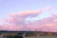 2020/11/04 - 今朝の一枚 石狩川の朝