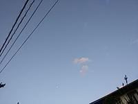 今って晩秋? - hanasdiary.exblog.jp