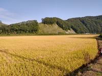 2020.09.09 厚真の農業バイト終了 - ジムニーとハイゼット(ピカソ、カプチーノ、A4とスカルペル)で旅に出よう