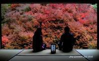 ◆ また行きたい「紅葉の但馬安國禅寺」(2020年11月) - 空とグルメと温泉と