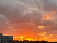 蜘蛛と夕陽 - 流れる雲のように