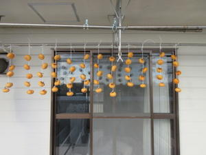 柿を干す/落語じゅげむ会のこと -