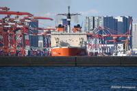南極観測船しらせ東京港から出港 - カメラと会いに行く