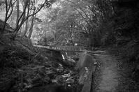 山の道 - MonochromePhoto