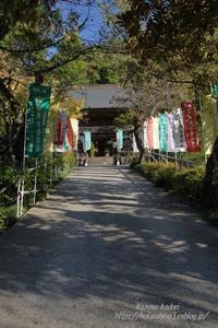 秋の秩父12番札所仏道山野坂寺 - 風の彩りー3