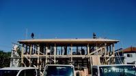 所沢市の木の家 * 上棟 - Den設計室 一級建築士事務所