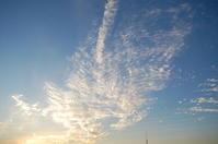 晴れ渡る空に雲(巻積雲) - いま、そこにある雲
