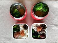 餃子スープ弁当 - 大学弁当