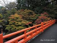 ◆ また行きたい「やぶ紅葉まつり」@兵庫県養父神社(2020年11月) - 空とグルメと温泉と