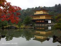 ◆ また行きたい「紅葉の金閣寺」(2020年11月) - 空とグルメと温泉と