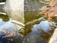 秋の逆さ城 - NATURALLY