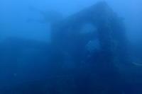 20.11.7真夏日! - 沖縄本島 島んちゅガイドの『ダイビング日誌』