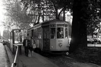 One day in Milano - S w a m p y D o g - my laidback life