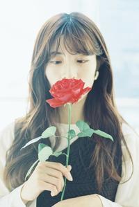 薔薇ポートレート その1 - photomo