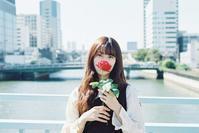 薔薇ポートレート その5 - photomo