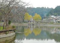 Go To 東金八鶴湖の秋 - 東金、折々の風景