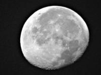 11月4日の月 - 写真撮り隊の今日の一枚2
