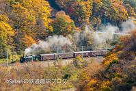 諏訪峡のSLぐんまみなかみ - Salamの鉄道趣味ブログ