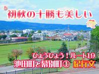ひょうひょう!ルート19 紀行文 2020.11.08 - ナオキブログ【公式】