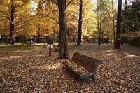 森林植物園へ - kisaragi