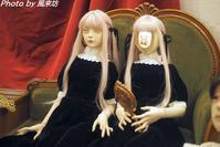 蕾-tsubomi-さんの個展 Dolls Room - 四季彩の部屋Ⅱ