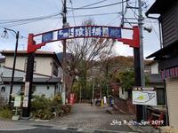 ◆ また行きたい「日本三奇橋 紅葉の猿橋」(2020年11月) - 空とグルメと温泉と