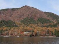 榛名湖畔の紅葉(2) (2020/11/1撮影) - toshiさんのお気楽ブログ