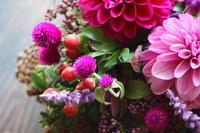 松ぼっくりとお花とお茶 - ミセス サファイア 静けさの中で