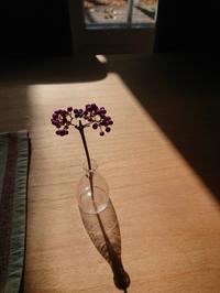 晩秋の紫式部 - 追分日乗