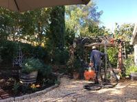 そろそろ家まわりの冬支度 - ちょっと田舎暮らしCalifornia