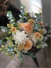 癒やしのお花と元気が出るお花 - しおとまとのJoy日記