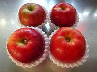 アップルパイを焼く - マイニチ★コバッケン
