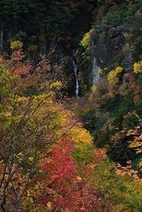 晩秋の山と紅葉の滝白髭岳・滝の谷大滝 - 峰さんの山あるき