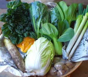 今週の野菜セット(11/10~11/14着) - キシノウエンの 今日のてしごと