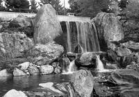 モルモン教会の築山と小滝と新型コロナ感染者の急増 - 照片画廊