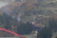 色付いた木々から出てきた汽車- 2020年晩秋・磐越西線 - - ねこの撮った汽車