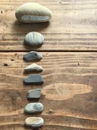 石好き⁉︎ - 六丁目日記