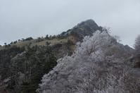 瓶ヶ森~長沢~にこ淵 - 軟弱足 の山歩き
