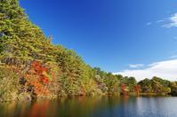 11月初旬の五色沼-2 - 自然と仲良くなれたらいいな2