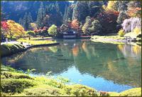 水辺の紅葉 - ☆彡 四季写遊 ☆彡