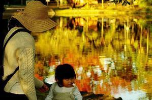 川面の秋 -