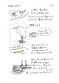 台風のあとで - 今日もゆくねこ