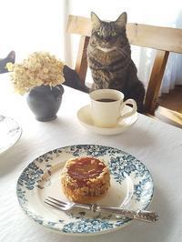 猫とおやつ♪ りんごのタタン - キッチンで猫と・・・