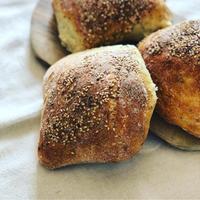 11月11日はムッフォレッタを食べる日 - 幸せなシチリアの食卓、時々にゃんこ