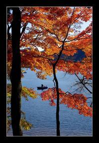 湖畔の紅葉 - Desire